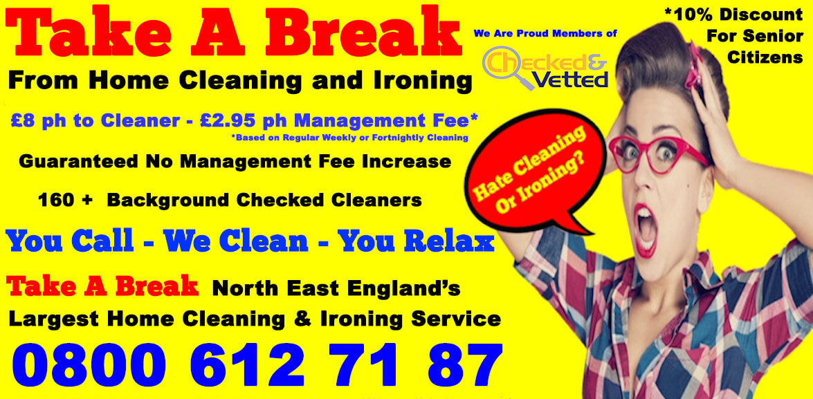 Take a Break   Professional Home Cleaning
